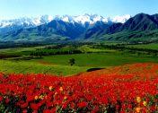 Виза в Киргизию для россиян: безвизовое посещение