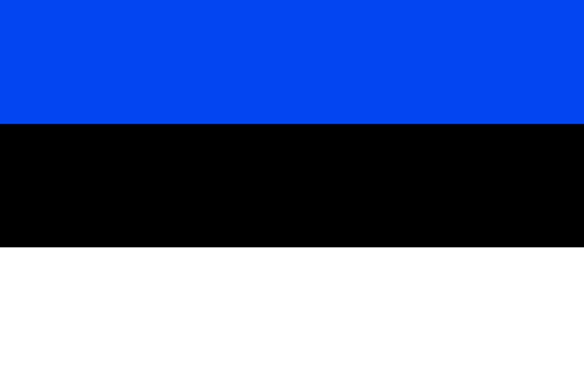 Анкета для оформления визы в Эстонию