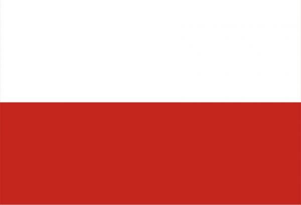 Анкета для оформления визы в Польшу