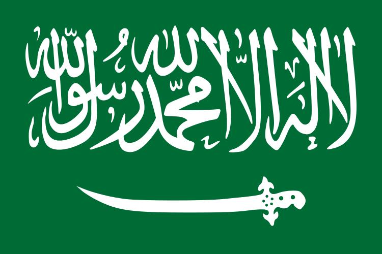 Анкета для оформления визы в Саудовскую Аравию