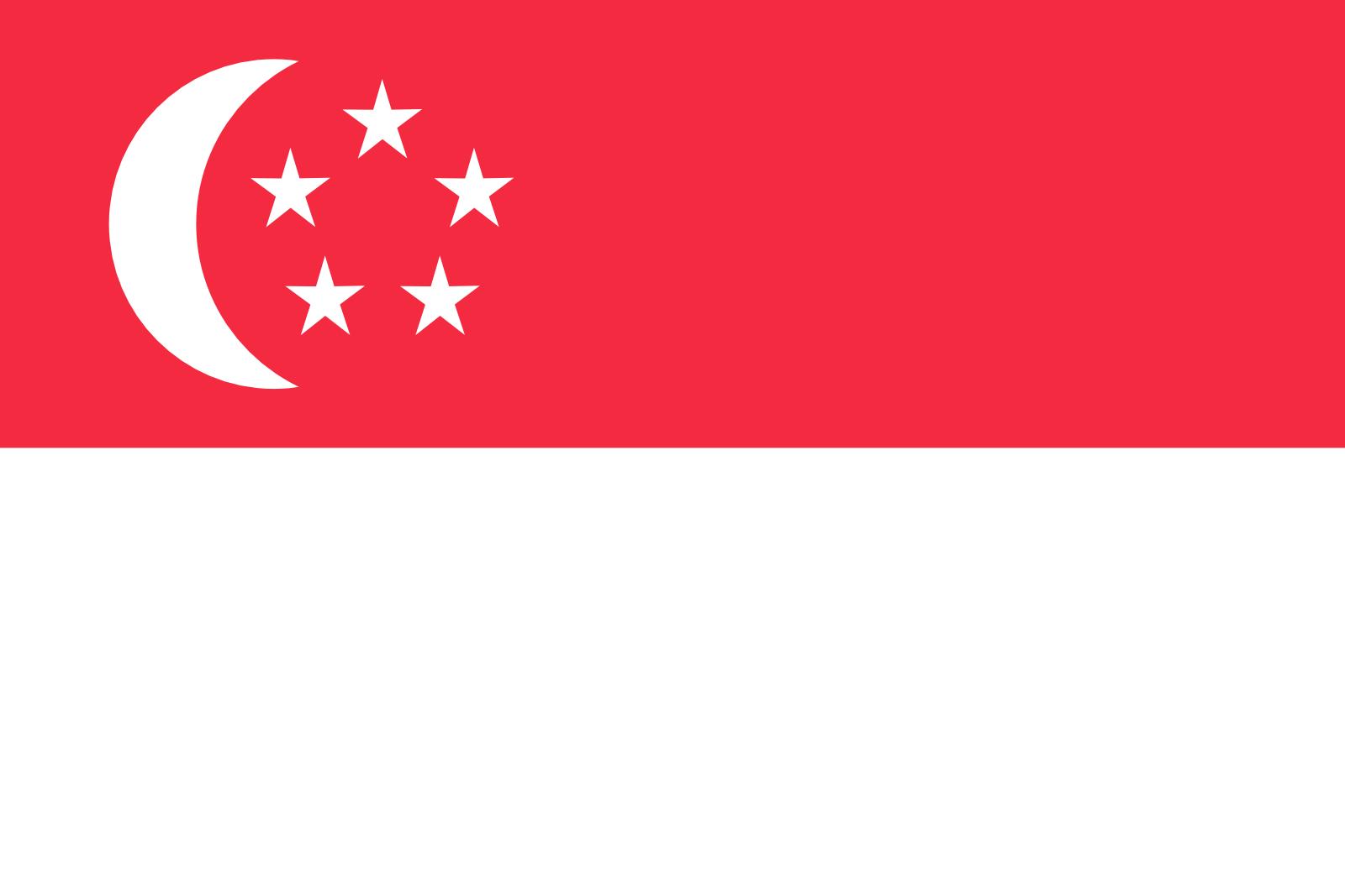 Анкета для оформления визы в Сингапур