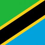 Анкета для оформления визы в Танзанию