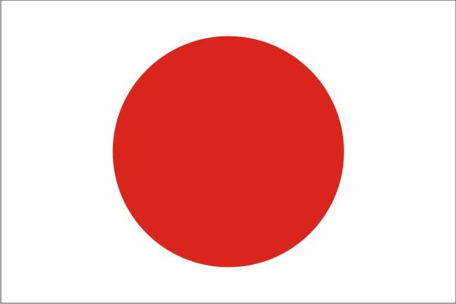 Анкета для оформления визы в Японию