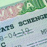 Виды шенгенской визы и их отличительные особенности